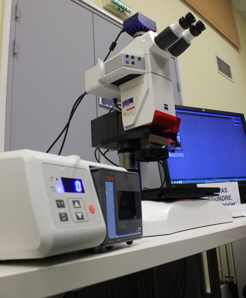Microscope axiozoom