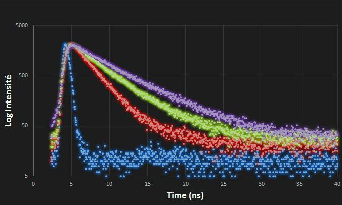Exemples de décroissance de fluorescence au cours du temps