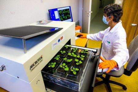 Scanner à tiroir avec échantillons de plantes
